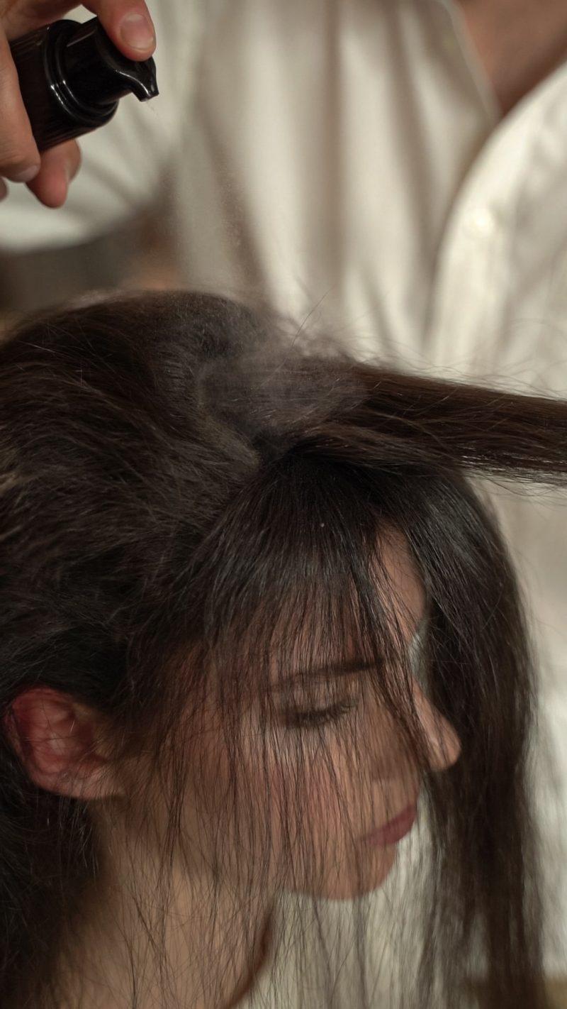 Pulveriza Timeless Beauty Peinado Navidad Termix